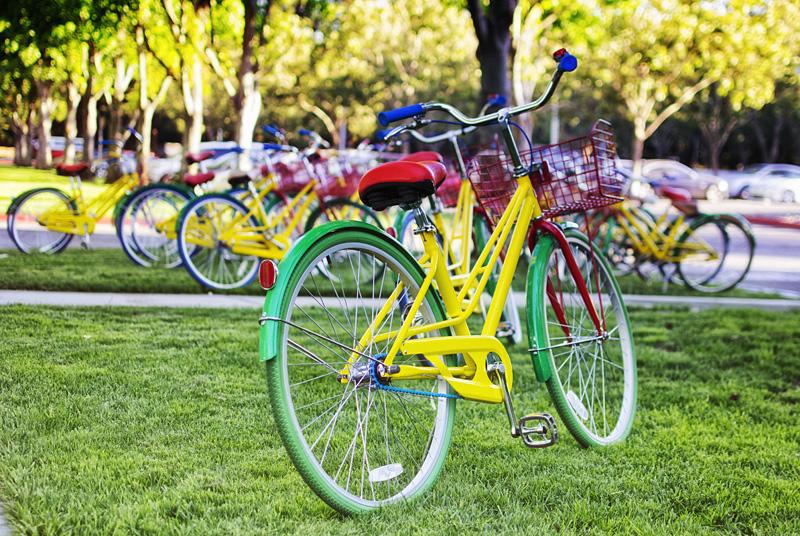 @Google Campus